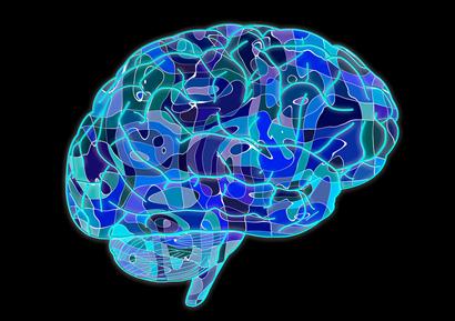Cómo conseguir mayor rendimiento en tu día a día mediante la neurociencia